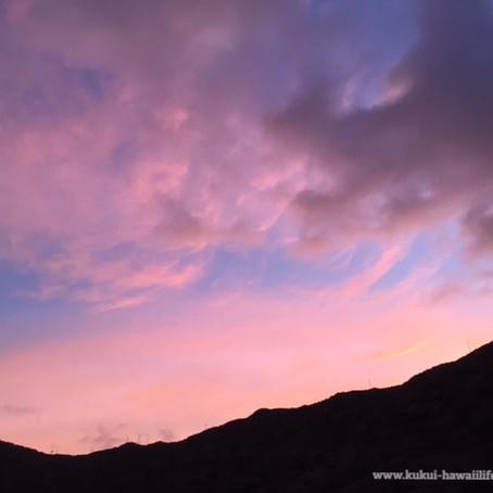 月曜日の朝は、ピンク色の空