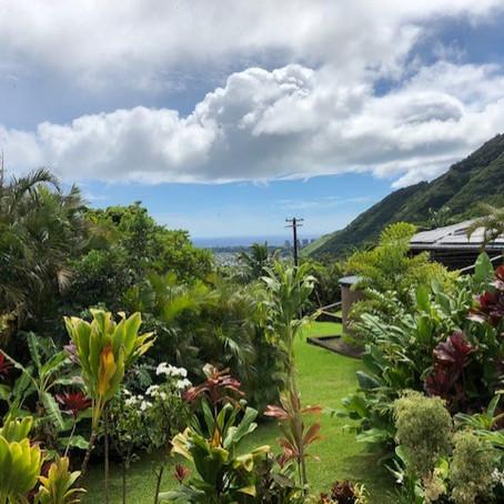 ハワイ暮らしを垣間見る