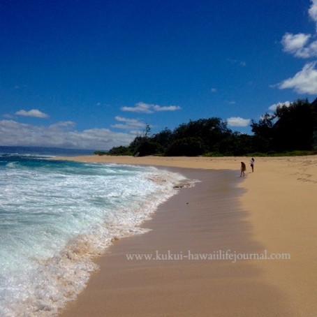 ハワイ日和:ミニ旅ハワイ