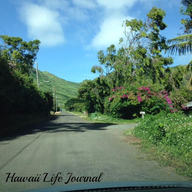 ハワイ Hawaii