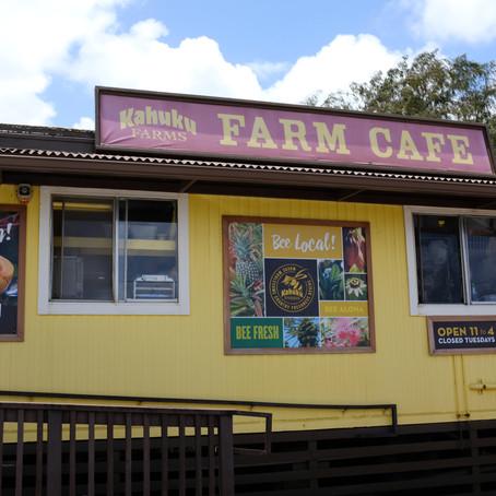 Kahuku Farmで採れたてが新鮮でおいしい!-ミニ旅ハワイ