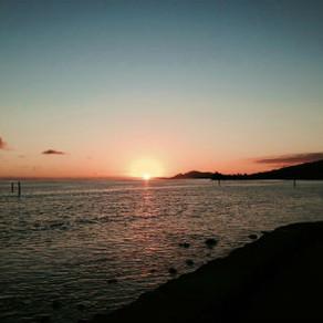 ハワイという島に流れ着いて…