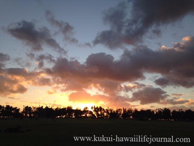 hawaii life journal