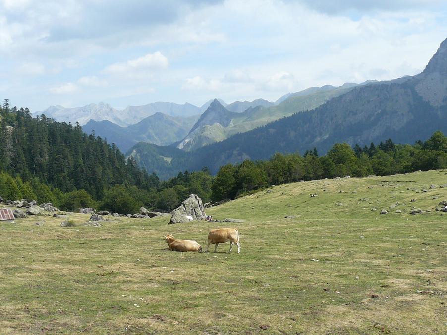 vue sur les pyrenees
