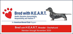 2019_DCH_Bred With Heart_banner.jpg
