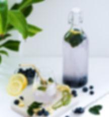Gin-Limonade.jpg