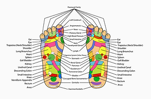 """Dabei wird das Kräuterpflaster an den Füssen auf den Akupunkturpunkt Ni1 geklebt. Der Ni 1 Akupunkturpunkt """"yong quan"""" ist einer der wichtigsten Punkte der Akupunktur."""