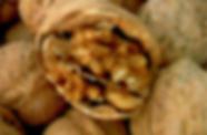 In der chinesischen Medizin herrscht eine These, wonach ein Organ mit Nahrung zu stärken ist, die ihm in der Form ähnlich ist. Walnuss enthält reichlich Nährstoffe, kann Niere stärken und Hirnfunktion unterstützen, weswegen deren Konsum zu einem langen Leben beiträgt.
