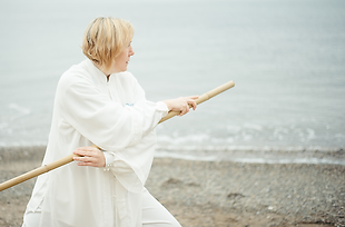 Beeinflussung des antiken Gesundheits-Qi Gong und verschiedener anderer Trainingsmethoden.