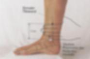 An diesem Punkt vereinigen sich alle drei Yin-Leitbahnen des Fusses  und können von hier aus beeinflusst werden. Bei Schlaflosigkeit, Dysmenorrhoe, Amenorrhoe, unregelmässige Menstruation, PMS, etc.