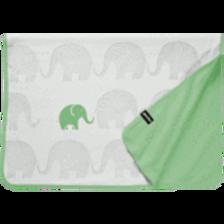 Elefanten - Familie 75 x 100 cm