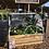 Thumbnail: Mini Tunnel + Planter Box