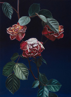 Serie Flores · Óleo sobre tela · 44 x 33 cm · 2016