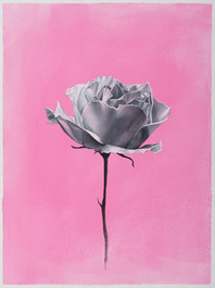 Oil on paper · 32 x 24 cm · 2017