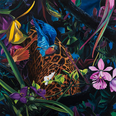 Serie Paradise found · Óleo sobre tela · 70 x 70 cm · 2018