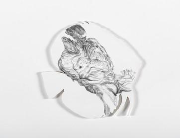 Series Sireno · Oil and graphite on mdf · 20 x 21 cm · 2020