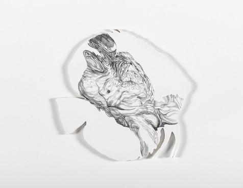 Serie Sireno · Óleo y grafito sobre mdf · 20 x 21 cm · 2020