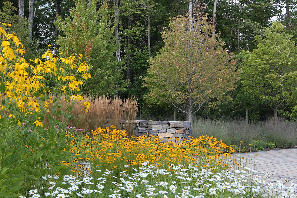 7 Perennial and Grass Gardens.tif