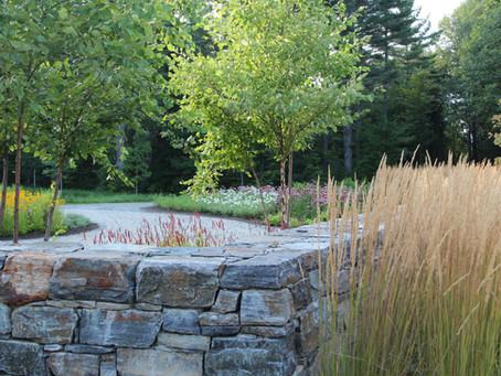 Clinton & Associates is now CLINTON+RIES Landscape Architects