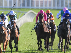 Samadoubters silenced with a nod and a Winx to the best