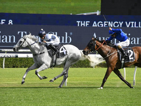 Greysful Glamour Wins G2 Villiers – Everyone Loves Her