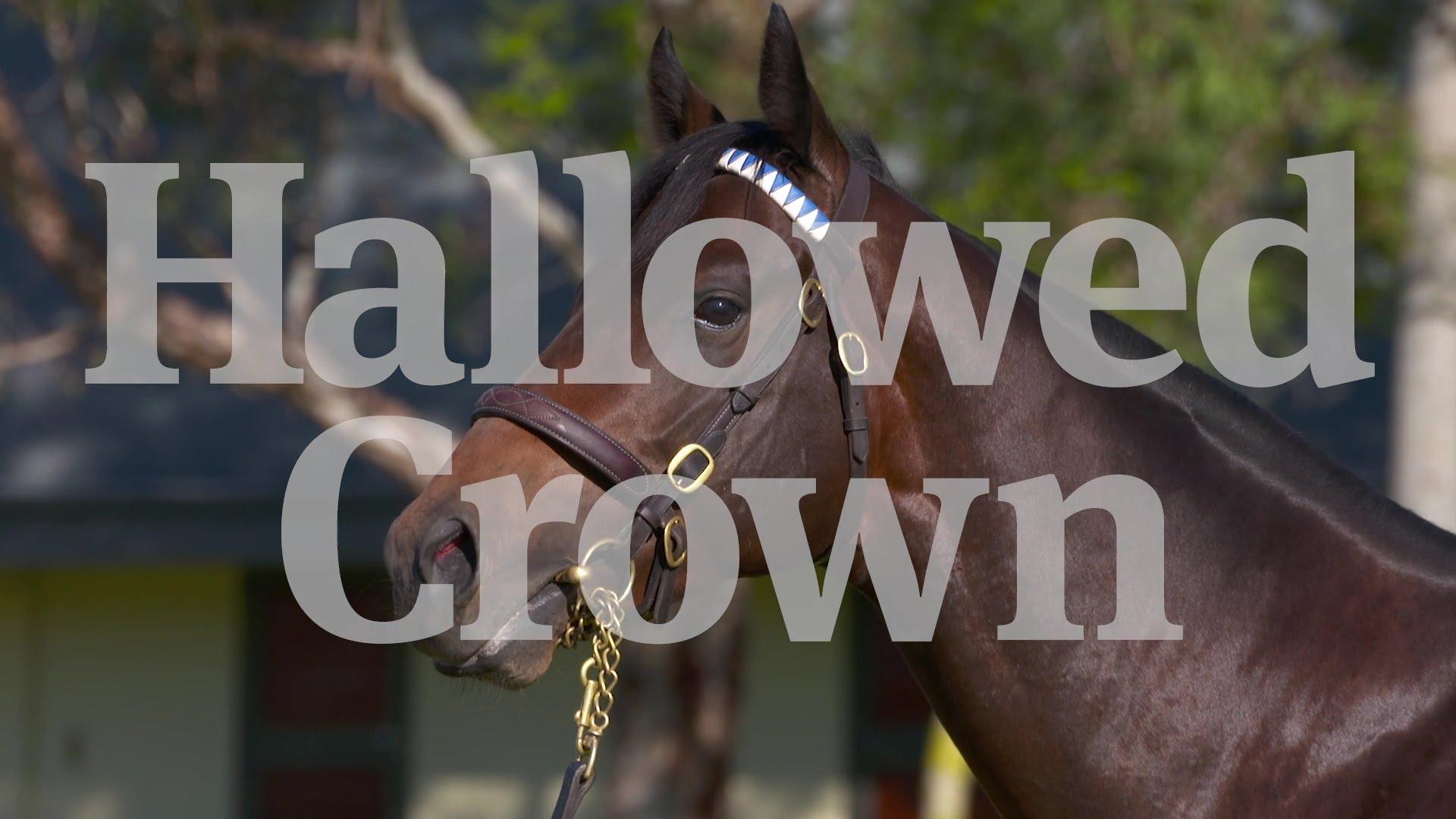 HALLOWED CROWN 4