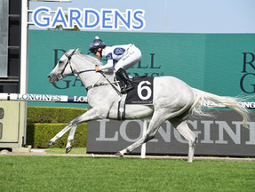 Stable Favourite Wins ATC Cup