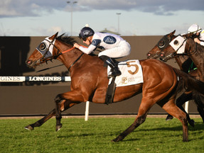 Irithea Rewarded For Her Consistent Form With Dark Jewel Classic Win
