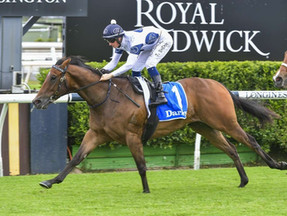Mark Newnham setting Lord Olympus for Queensland glory
