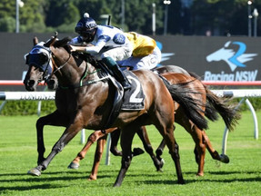 Mark Newnham excited ahead of his first Wagga Cup