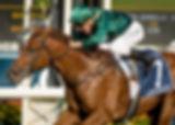 Race-7,-Capitalist,-Blake-Shinn_19-03-16