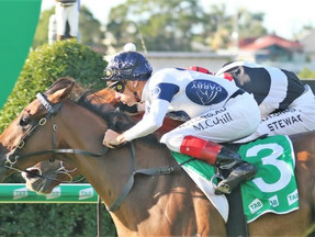 Lord Olympus lands feature win in Queensland