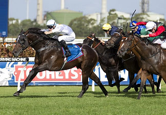 Vancouver-winning-the-G1-Golden-Slipper-
