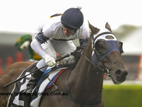 Dark Eyes continues to step up to plate