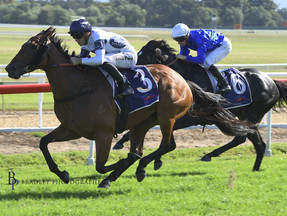 Interstate Stakes winning double for Darby Racing