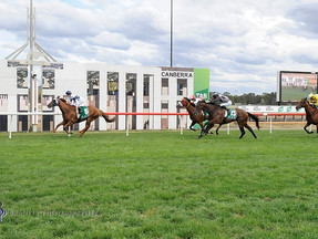 Not A Single Doubt's Samadoubt All The Way in Canberra Cup