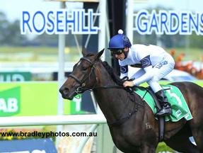 She Will Reign tightens grip on Golden Slipper after stunning win at Rosehill