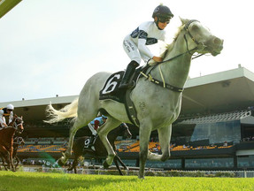 Glamour appeals to Villiers Stakes test