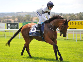 Darby Racing on behalf of owners to offer four quality race mares at the Magic Millions National sal
