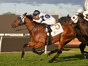 Irithea set for G2 Dane Ripper Stakes