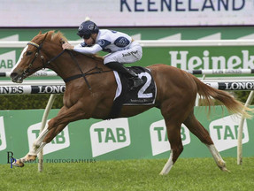 Darby hoping Every Rose can bloom at Wyong on way to Magic Millions