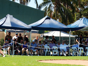 Hugely successful Yearling Parade at Wild Oaks Farm