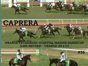Caprera breaks his maid in style