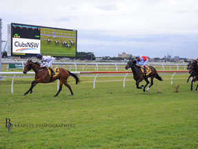 IRITHEA -Our impeccably bred SNITZEL filly breaks through at Newcastle