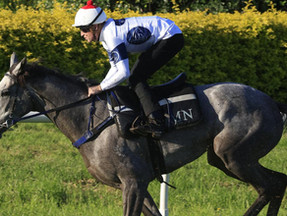 History working for and against Group 1 duo for Newnham