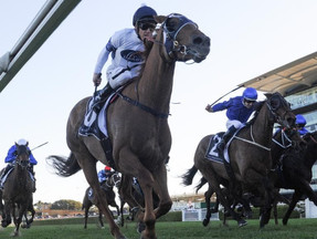 Samadoubt going for hat-trick at Randwick