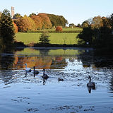 AutumnKiltegan.jpg