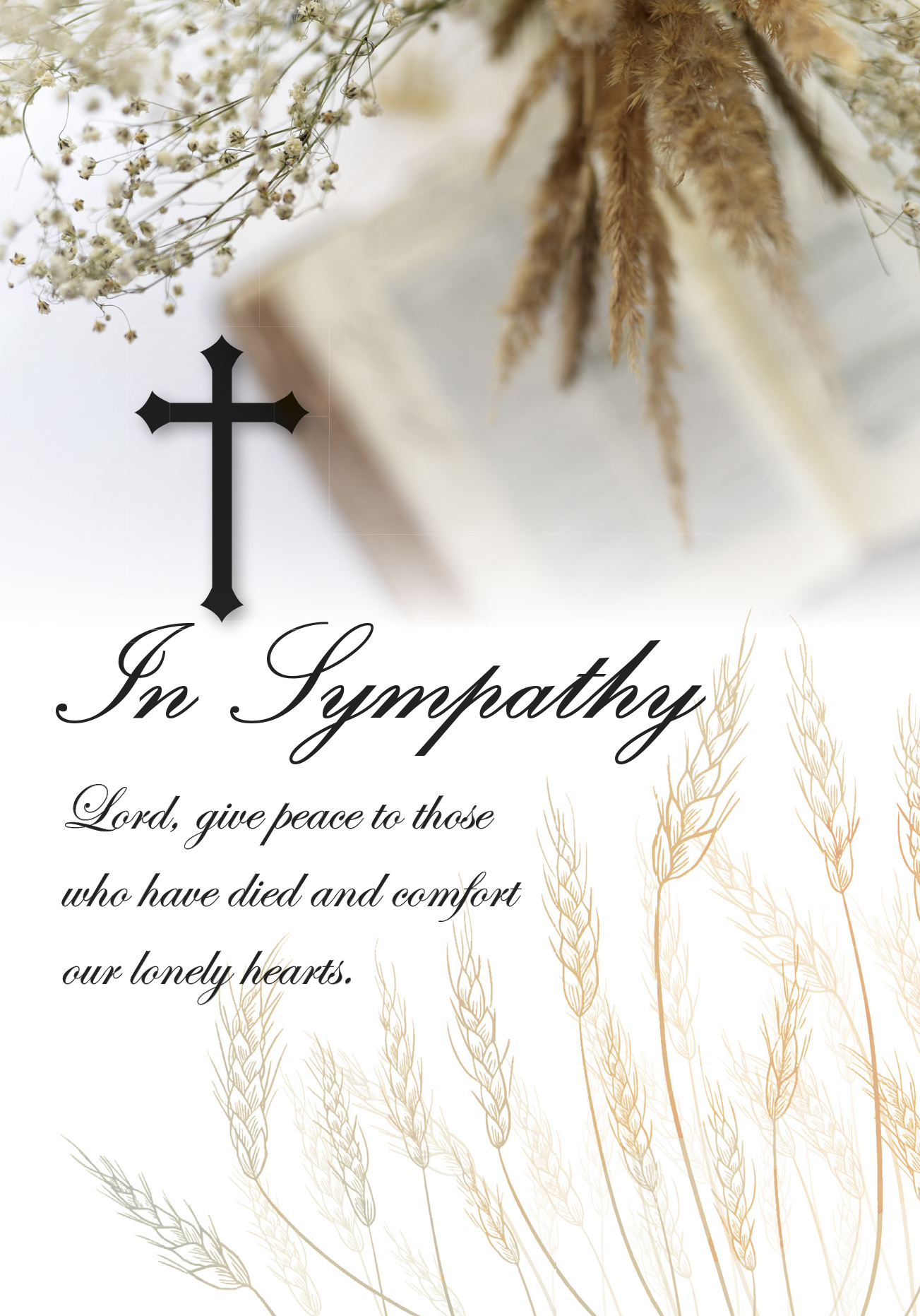 New - In Sympathy Bible Wheat