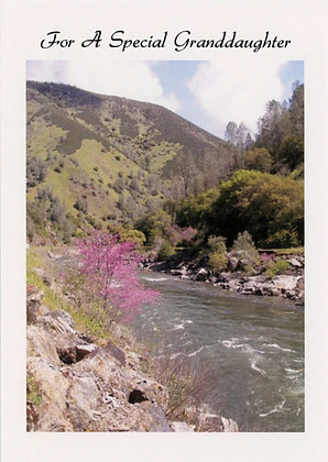 For A Special Granddaughter - Yosemite,CA, GD1