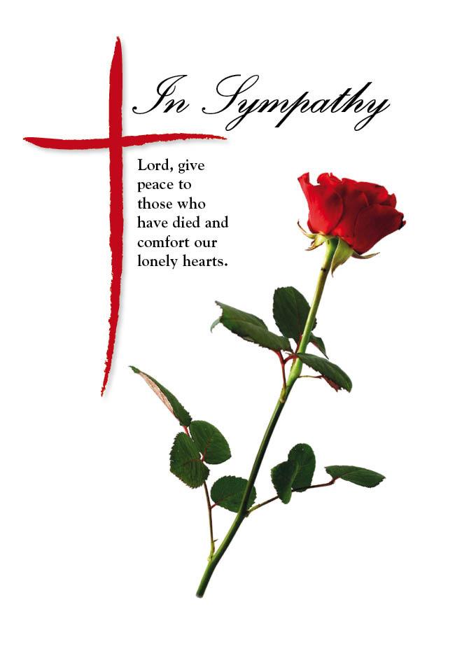 In Sympathy Rose